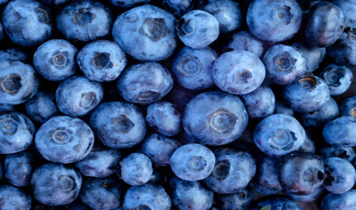 The Hippocratic Post - blueberries
