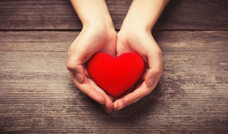 The Hippocratic Post - cardiomyocytes