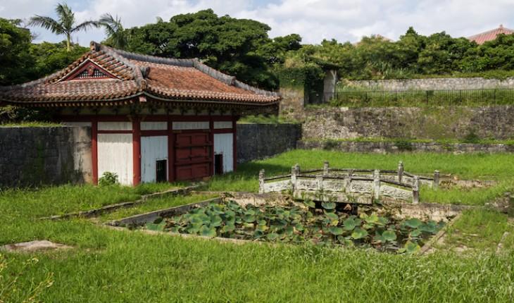 The Hippocratic Post - Okinawa