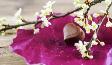 The Hippocratic Post - dark chocolate