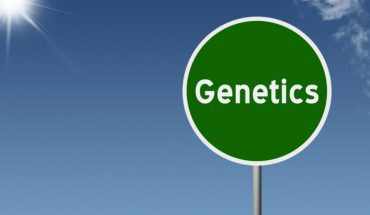 The Hippocratic Post - DNA profiling