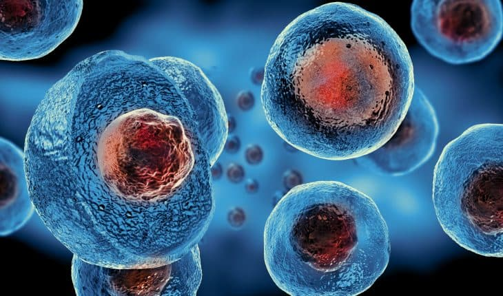 Stem cell research for 'untreatable' STDs - The Hippocratic Post