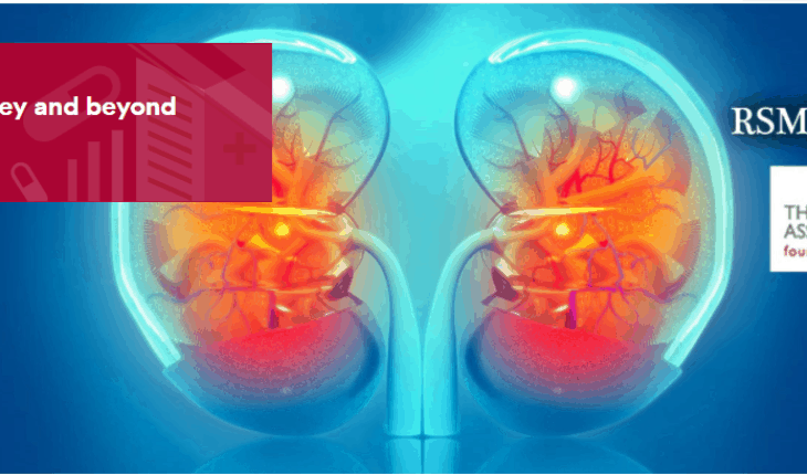 The kidney and beyond