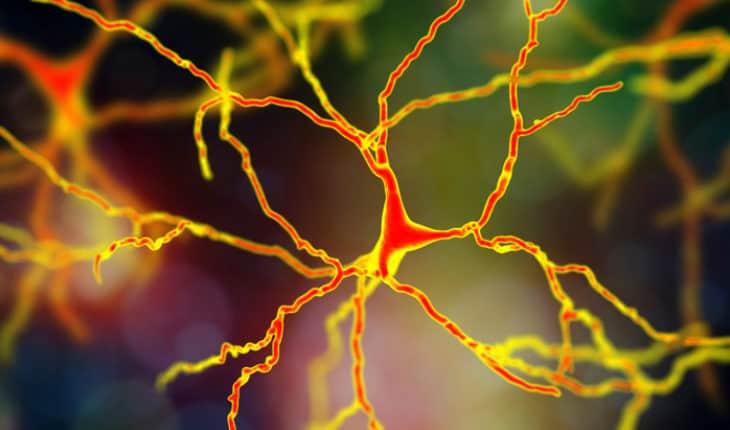 Neurological consequences