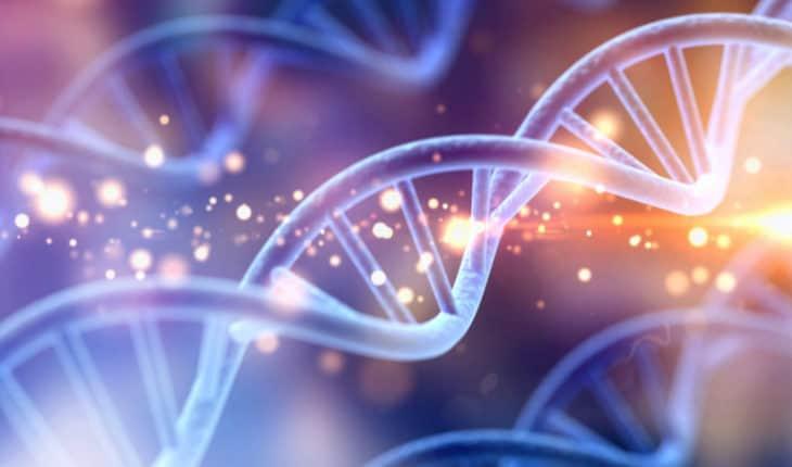 Genetic breakthrough
