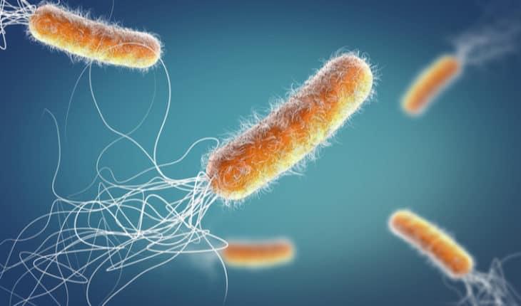 antimicrobial resistant diseases