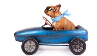safe car travel